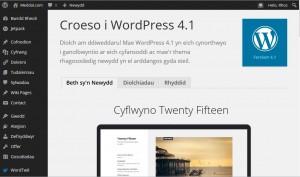 WordPress 4.1cy